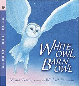 WhiteOwlBarnOwl cover