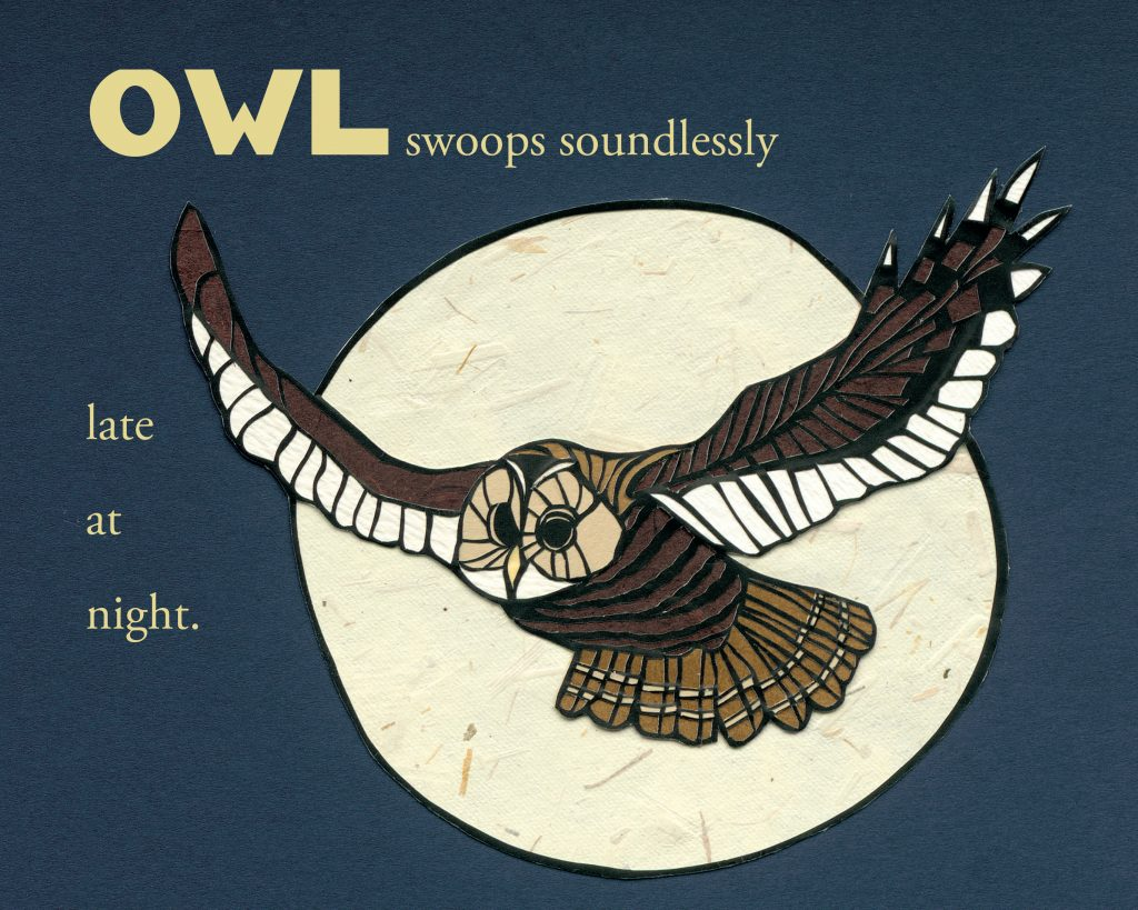 Interior artwork of owl from Every Day Birds