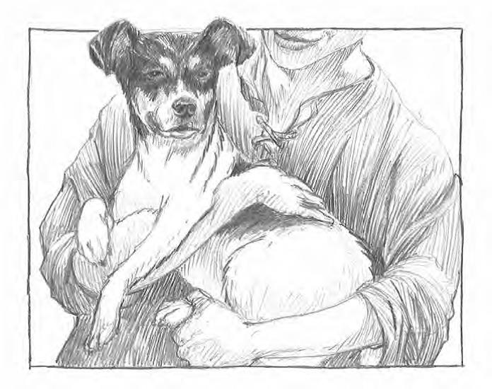 Interior artwork by Michael G. Montgomery from Leo Dog of the Sea