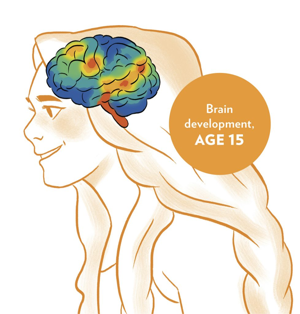 Int image brain development age 15 from HELLOFLO: THE GUIDE, PERIOD