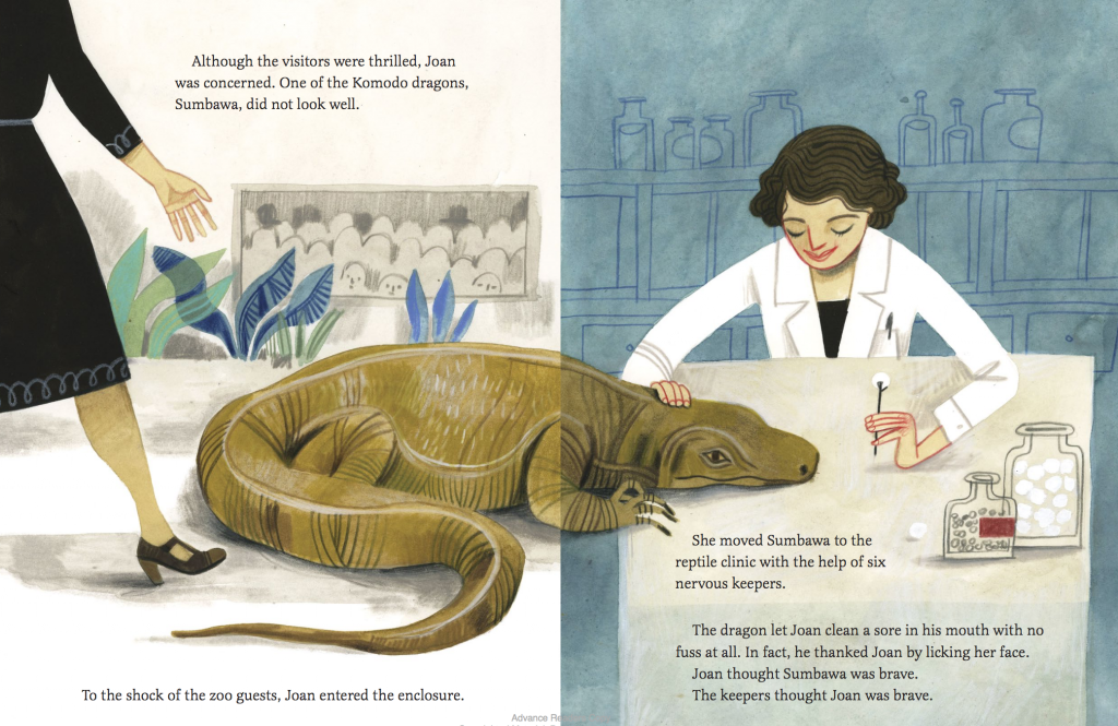 Interior illustration spread from Joan Procter, Dragon Doctor