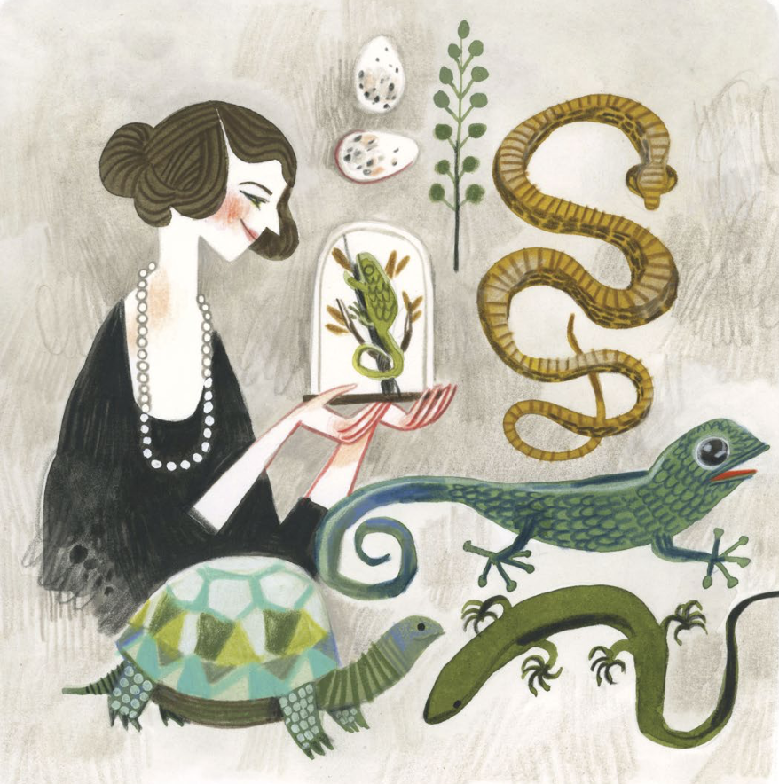 Interior illustration from Joan Procter, Dragon Doctor