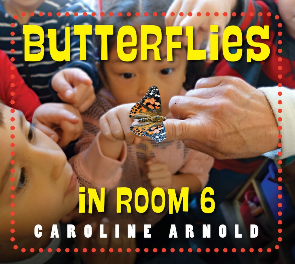 cover photo by Caroline Arnold from Butteries in Room 6