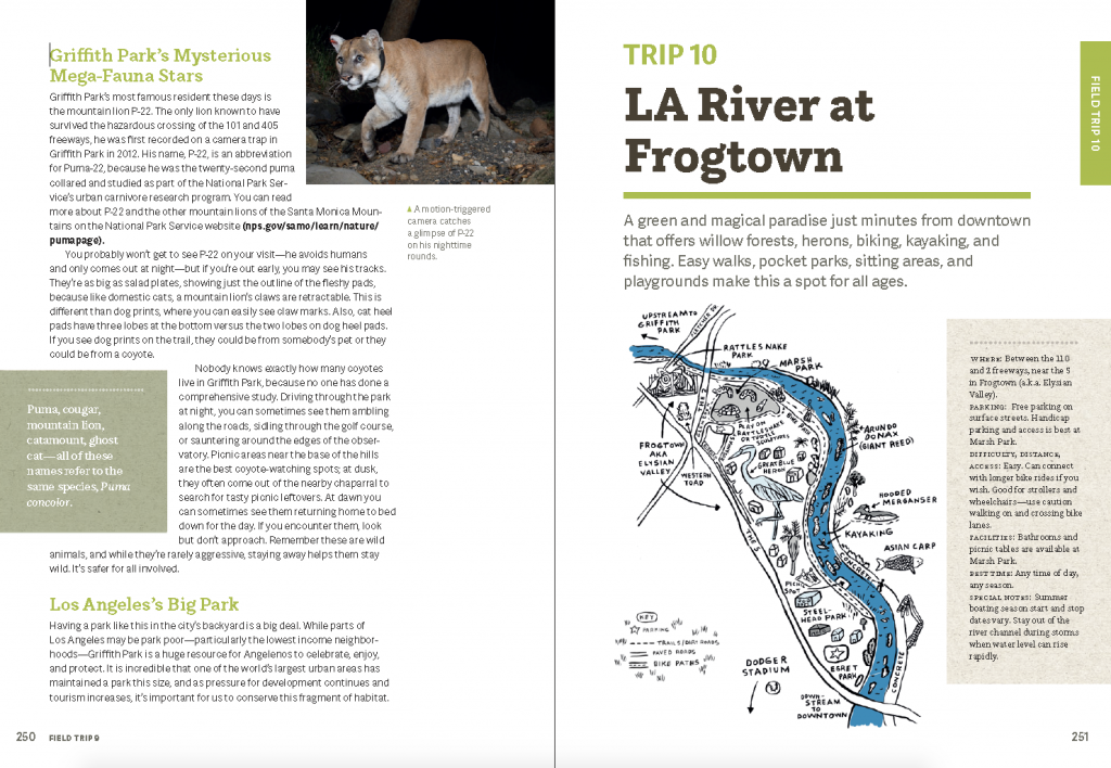 interior photographs from Wild LA with map illustration by Martha Rich