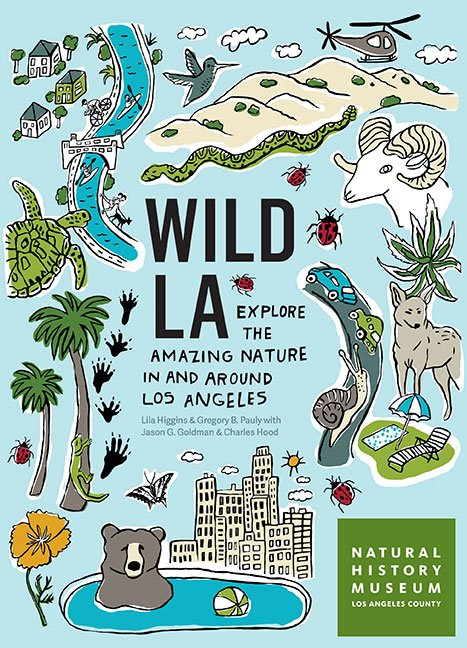 Wild LA book cover illustration by Martha Rich