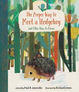 The Proper Way to Meet a Hedgehog book cover illustration