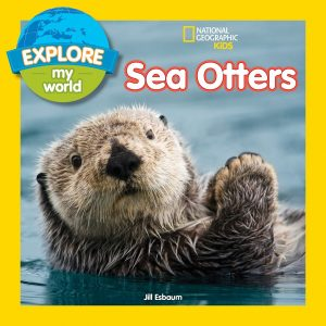 sea otters book cvr