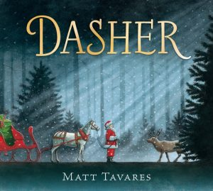 Dasher Book Cover