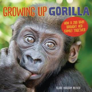 Growing_Up_Gorilla-book-cover