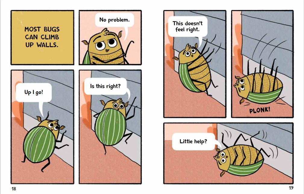 Burt The Beetle int18-19
