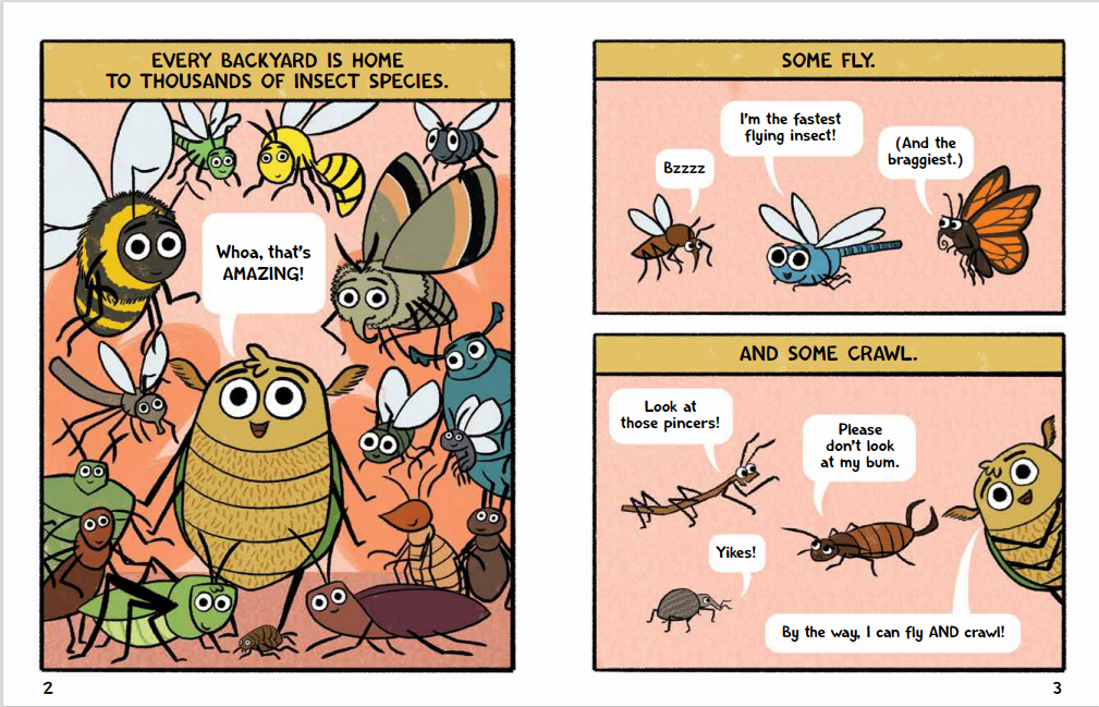 Burt The Beetle int2-3