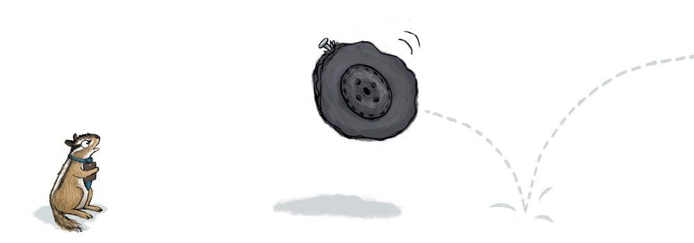 chipmunk-tire