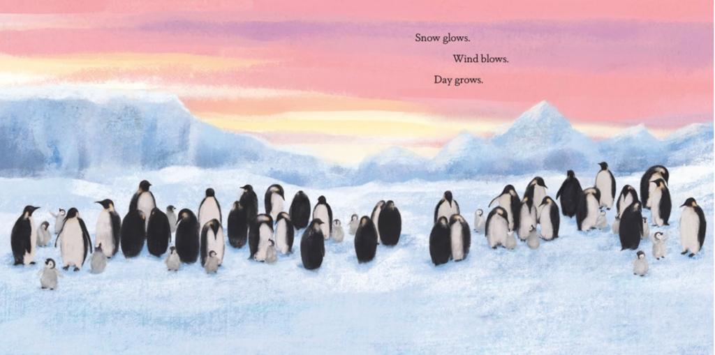 Penguin Journey int2